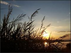 #Tramonti (isabella difronzo) Tags: tramonti
