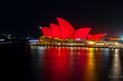Painting the town red (Asteria D.) Tags: new bridge light red house night painting photography town opera harbour year sydney quay projection cny once tet celebrate lunar circular 2016