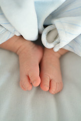 Nelson - 3 Weeks (SugaHill21) Tags: baby feet toes nelson pieds nouveaun nourisson