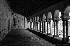 Albi (France) (clodio61) Tags: old city urban blackandwhite house france building church monument lamp architecture cat french photography ancient europe day cityscape exterior outdoor traditional nobody historic column cloister typical tarn colonnade albi portico midipyrenees