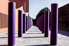 Vanish (ekk7283) Tags: city travel urban canon mexico perspective culture
