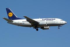Lufthansa Boeing 737-530 D-ABIU (Kambui) Tags: germany airplane deutschland football colorful fussball soccer airplanes special planes lh lufthansa frankfurtammain aviones avions flugzeuge rheinmain  avies eddf paintschemes aeroplani kambui  sonderbemalung