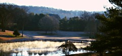The Course (Amandaclicks) Tags: morning trees light mist lake water fog landscape pond frost knoxville tennessee golfcourse landscapephotography