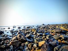 Belfast, Maine (olivpiphotos) Tags: travel sea usa sun beach nature landscape rocks maine belfast adventure leisure