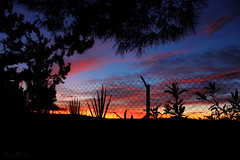 Winter sunsets. (Sara C.M) Tags: winter sunset naturaleza nature colors landscape atardecer twilight colours sundown paisaje colores crepsculo canoneos550d efs1855mmisii