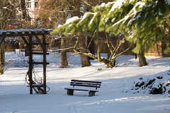 January bench (puste66blume) Tags: bench bank stadtpark hbm limbachoberfrohna alpha58 inesbilder puste66blume
