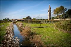 141101 burano 478 (# andrea mometti | photographia) Tags: venezia colori burano merletti