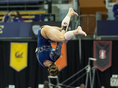 Arizona-P3191386 (spf50) Tags: seattle arizona gymnastics pac12championships