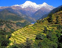 Nepal (Alex Thetford) Tags: travel nepal mountains scenery view wanderlust explore views stunning