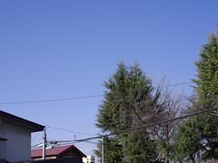 Good Morning from My Window. March 16, 2016 (fukapon) Tags: pentax aomori hirosaki frommywindow smc f28 tweet  75mm  smcpfa64575mmf28 pentaxfa645 flickrandroidapp:filter=none 645z goodmorningfrommywindow
