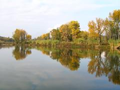 Gardon (maxguitare1) Tags: reflection rio canon river landscape fiume paisaje rivire reflet canong5 paysage paesaggio reflexin riflessione