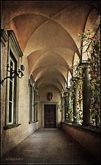 Entrada y salida (alazamo) Tags: italy canon lucca palazzo mansi 1000d alazamo