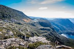 Tarn Shelf_2 (mckenart) Tags: autumn mountains landscape flora australia alpine tasmania wilderness fagus tarnshelf nothofagusgunii deciduousbeech