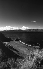 (eddieddieddie) Tags: newzealand bw 80s agfa caffenolc thesouthcoast 135format 35mmfilmscanningwellington