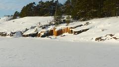 SE shore of Trskn island (Porkkala, Kirkkonummi, 20160123) (RainoL) Tags: winter snow ice finland geotagged island frost january icicle fin 2016 uusimaa porkala nyland kirkkonummi porkkala kyrksltt 201601 fz200 storlandet 20160123 trskn geo:lat=5994847840 geo:lon=2437515647