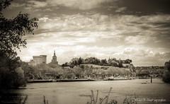 Avignon (Rmi Avignon) Tags: provence avignon rhone
