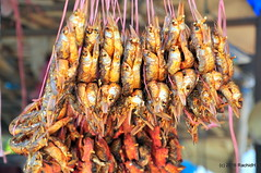DSC_0044 (rachidH) Tags: nepal food fish bus fruits motorcycles stop kathmandu pokhara crustaceans gaslines rachidh