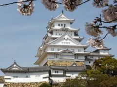 Shirasagijo I (Douguerreotype) Tags: pink white castle japan cherry blossom cherryblossom himeji sakura