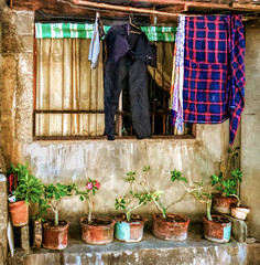 Laundry and potted plants (FotoGrazio) Tags: poverty stilllife house painterly art texture home window shirt composition painting photography photoshoot pants fineart philippines poor streetphotography peaceful streetscene clothes pottedplants laundry impressionism moment photographicart capture digitalphotography dryingclothes phototopainting phototoart sandiegophotographer artofphotography flickrelite californiaphotographer internationalphotographers worldphotographer photographersinsandiego fotograzio photographersincalifornia waynegrazio waynesgrazio