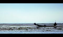 Early bird (LeWaggis) Tags: morning blue lake silhouette fog see boat fisherman asia nebel burma lac bleu hour 7d myanmar inle asie blau bateau morgen longtail fischer brume barque heure bleue matin birmanie nebelig matinale pcheur