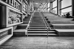rozet III (>>nicole>>) Tags: wood monochrome bike bicycle architecture stairs woodwork arnhem bibliothek nederland stairway treppe architektur monochrom holz fahrrad niederlande gelderland arnheim treppenhaus neutelingsriedijk timberconstruction holzbau bibliothekarnhem rozetcentre