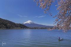 The Spring in Mount Fuji, Japan (Helle Jane) Tags: mountain lake japan mountfuji