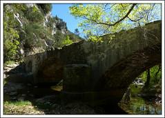 Vieux pont sur le Caramy (myvalleylil1) Tags: bridge france creek rivire pont provence var caramy tourves