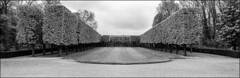 les arbres taills en esquimaux (Paucal) Tags: leica panorama digital de pano mm 40mm monochrom antony parc xpan stitched sceaux summicron40