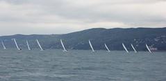 Nordio16_6 (Alberto Lucchi) Tags: club star sailing yacht sail tito regatta trieste regata 2016 coppa nordio adriaco
