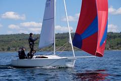 _DSF3536 (Frank Reger) Tags: regatta u20 dsc segeln segelboot diessen