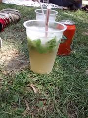 Mojito vodka (Daniela Synner) Tags: drink liquor mojito vodka