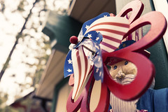 Uncle Sam (RickCaldera) Tags: blue red usa white snow cabin colorful framing bigbear unclesam