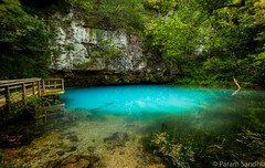 Blue Spring (photosisee) Tags: blue green nature water landscape outdoors spring natural turquoise conservation missouri ozarks 2015 5ds canon5dsr 5dsr canon1124