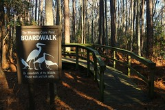 IMG_7385 (SweetMeow) Tags: forest shadows southcarolina boardwalk marsh conservancy hiltonheadplantation whoopingcranepondconservancy