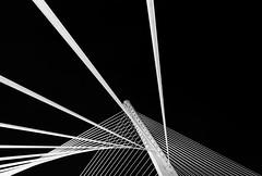 Ponte dos Tirantes 2 (Angel T.) Tags: bridge bw espaa white black blancoynegro spain fineart bn minimal galicia pontevedra tirantes