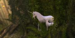 unicorn (earthfayrie) Tags: forest sl secondlife unicorn telrunya