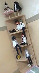 Doll Corner Shelf Display (almyki) Tags: ball kyle asian louis shiny doll dolls display jasmine 14 may mini jr shelf fairy tiny junior bjd tall 16 emilie bf abjd joint msd tf bluefairy yosd