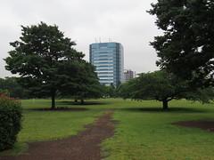 IMG_8701 (Momo1435) Tags: japan tokyo koto kotoku