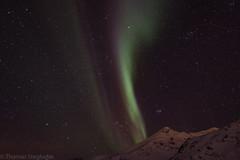Aurora (stegi_at) Tags: norway canon norwegen aurora nordlicht eos70d