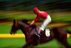 Racehorse (EdBob) Tags: seattle red horse motion color racetrack speed washington colorful ride 5 fast racing riding jockey whip whoa racecourse saddle racehorse tack edmundlowe edmundlowephotography allmyphotographsarecopyrightedandallrightsreservednoneofthesephotosmaybereproducedandorusedinanyformofpublicationprintortheinternetwithoutmywrittenpermission