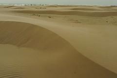 Dunes (mookiedog88) Tags: texas padreisland