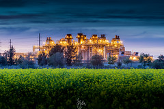 Lit Up Factory [EXPLORED] (Rohit KC Photography) Tags: california ca longexposure light sunset sky usa industry field canon landscape evening factory edited le mustard canon24105mmf4l canon5dmarkii