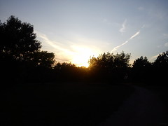 Transtional Hours - When Light Changes (8) (jeanette.horvath //Jeanne//) Tags: light sunset sun beautiful forest lights evening abend afternoon sonnenuntergang dusk path changing dämmerung transition