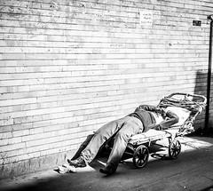 IMG_5216 (Niki.Suppan) Tags: street travel portrait blackandwhite white black slr monochrome contrast canon lens eos iran capital kultur north culture streetphotography highcontrast streetportrait persia wanderlust east backpacking 5d kit 28 traveling tehran middle dslr standard osten ef hdr wander teheran reise traveler markii 2470mm fernweh persien mittlerer streetsofiran