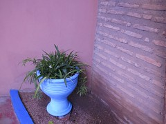 Wednesday Colours - Majorelle Gardens Walls (Pushapoze - sciatica) Tags: blue window rose bleu morocco maroc marrakesh fenetre jarre jardinsdemajorelle