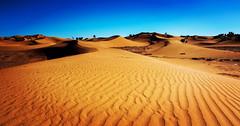 Erg Lihoudi Desert dunes, M'Hamid (Naturally Morocco) Tags: desert morocco maroc saharadesert mhamid saharasanddunes erglihoudi