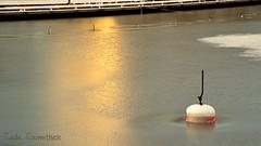 Icy marina #1 (suominensde) Tags: morning winter cold ice marina sunrise finland pier muelle frost glow shine invierno serene hielo naantali salidadelsol sereno