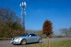 nature (eventful) Tags: road tower nature car outdoor thistle ladybird mast audi mobiletower mobilemast sianshipleyphotographysproject52