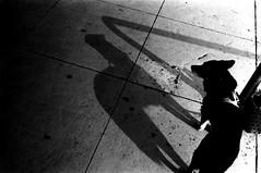 A COPY (Dinasty_Oomae) Tags: shadow blackandwhite dog monochrome blackwhite chiba  exakta funabashi        ihagee  exaktavarex    vx