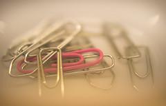 116/2016 One of these things ... (puste66blume) Tags: pink rosa hmm bro broklammern macromondays alpha58 inesbilder puste66blume 3662016